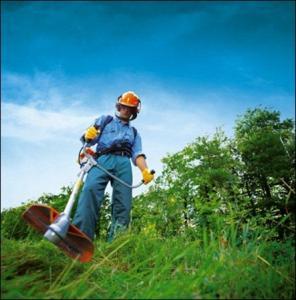 serviços de jardinagem e limpeza de terrenos em Curitiba